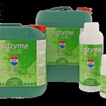 Enzyme combi