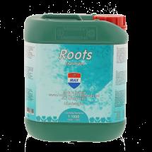 Roots 5L