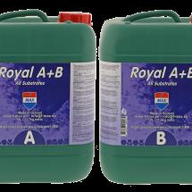 Royal A+B 10L