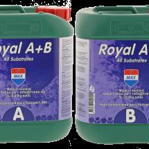 Royal A+B 5L